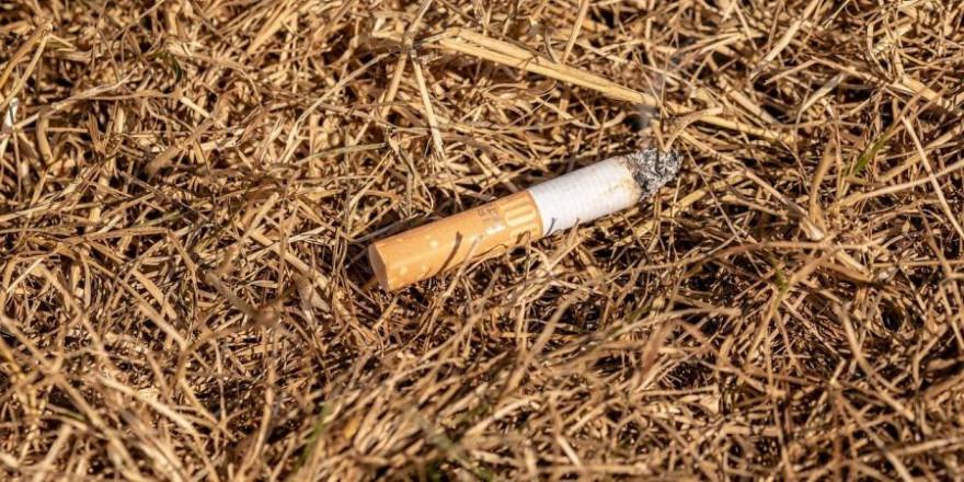 Mutmaßlich eine weggeworfene Zigarettenkippe war ursächlich für einen Waldbrand in Sigmaringen (Symbolbild: Myriams-Fotos)