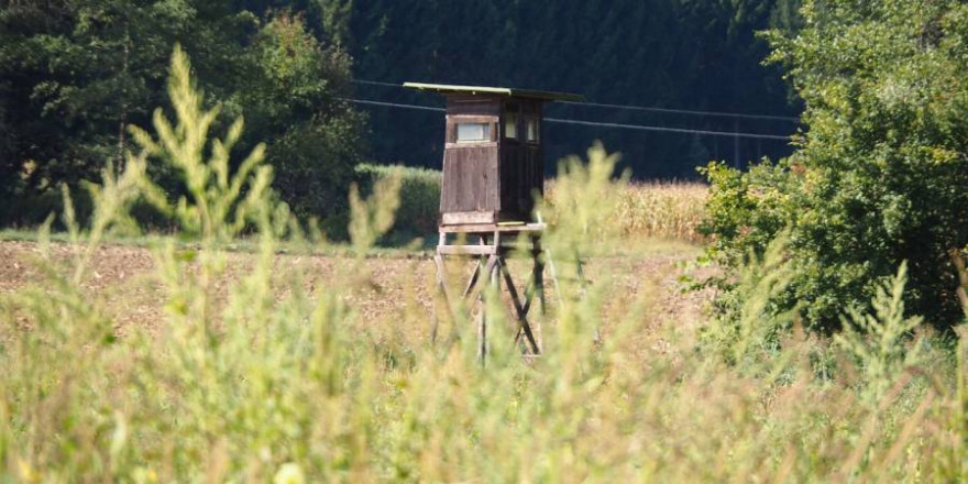 Hochsitz an einem Feld (Symbolbild: Ratfink1973)