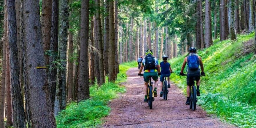 Gerade an Wochenenden sind Mountainbiker ein gewohnter Anblick in Deutschlands Wäldern (Foto: MaBraS)