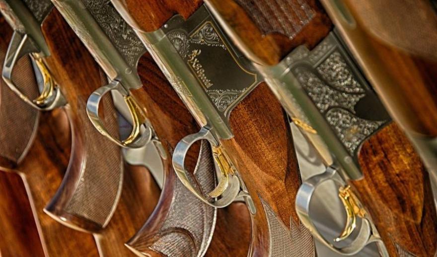 Ca. 30 Schusswaffen wurden durch unbekannte Täter in Oldenburg gestohlen (Symbolbild: Norman Bosworth)