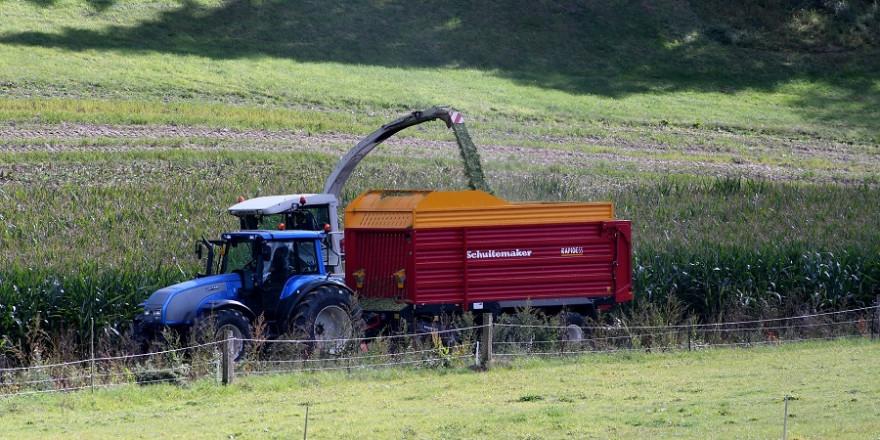Traktor bei der Maisernte