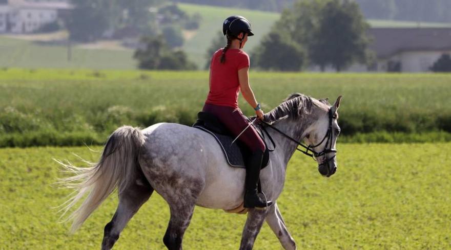 Reiterin auf einem Pferd (Beispielbild: Franz W.)