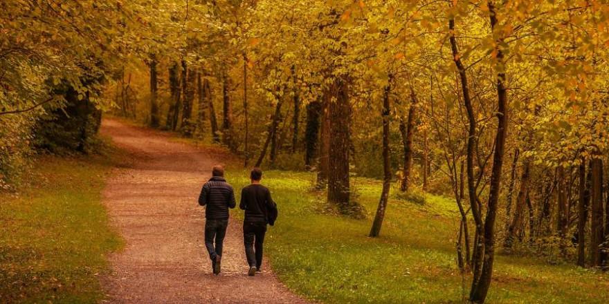 Erholungsuchende im Herbstwald (Foto: Lars Nissen)