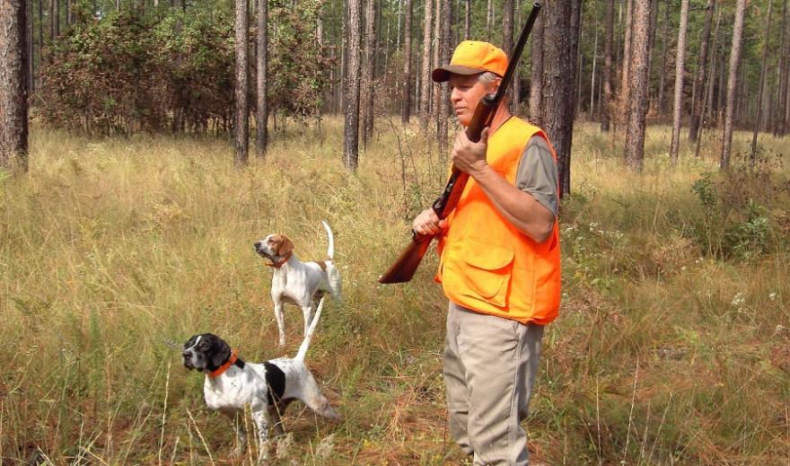 Ein Jäger mit zwei Jagdhunden.
