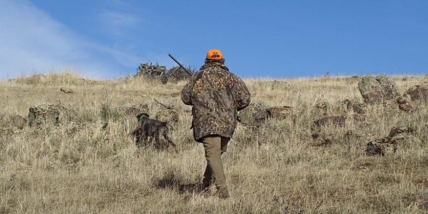 Jäger mit Hund auf einer Grünfläche.