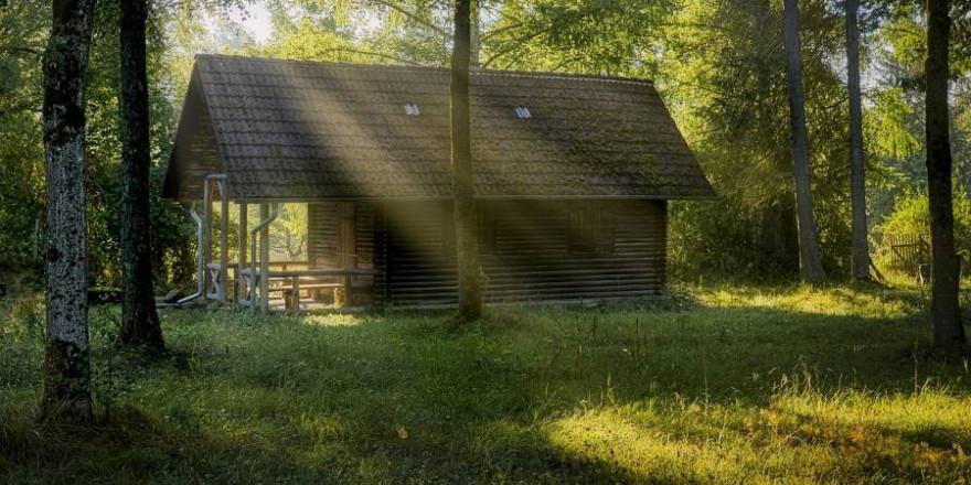 Eine Hütte im Wald (Symbolbild: Ingo Jakubke)