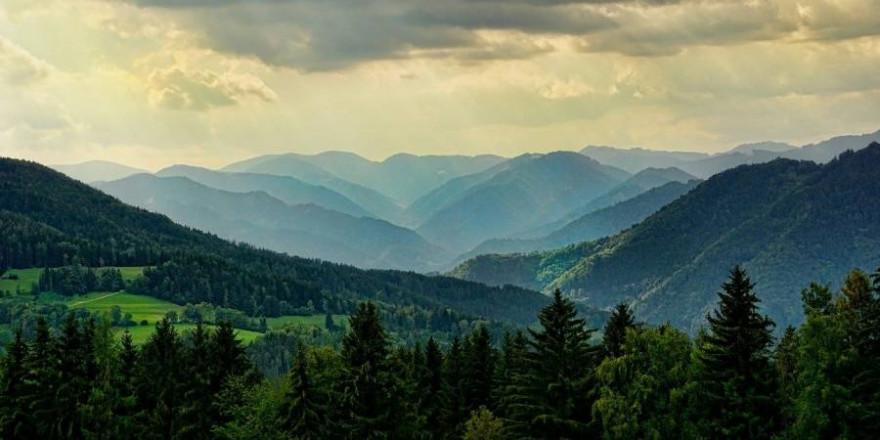 Mit Wald bewachsene hügelige Landschaft (Symbolbild: Schwoaze)
