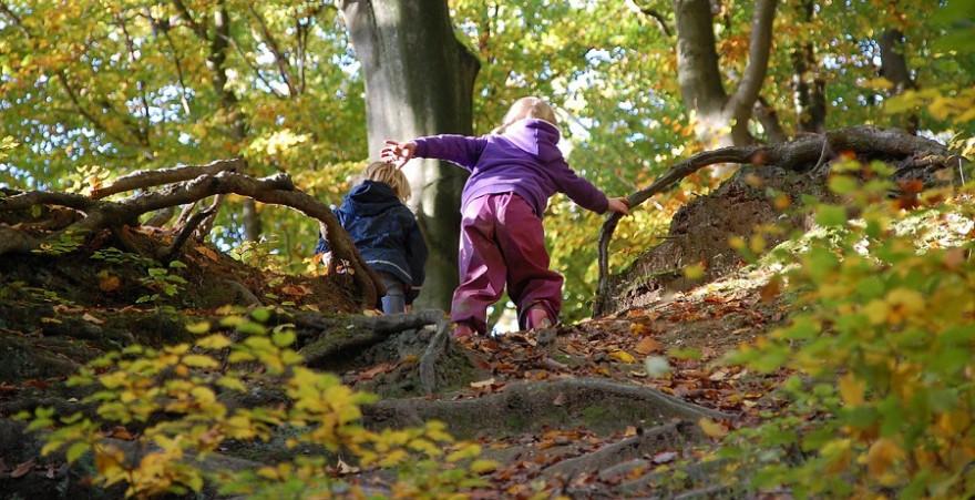 Spielende Kinder im Wald