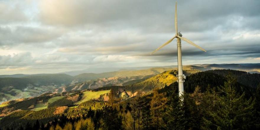 Ein Windrad im Schwarzwald (Symbolbild: Volkan Jurleit)