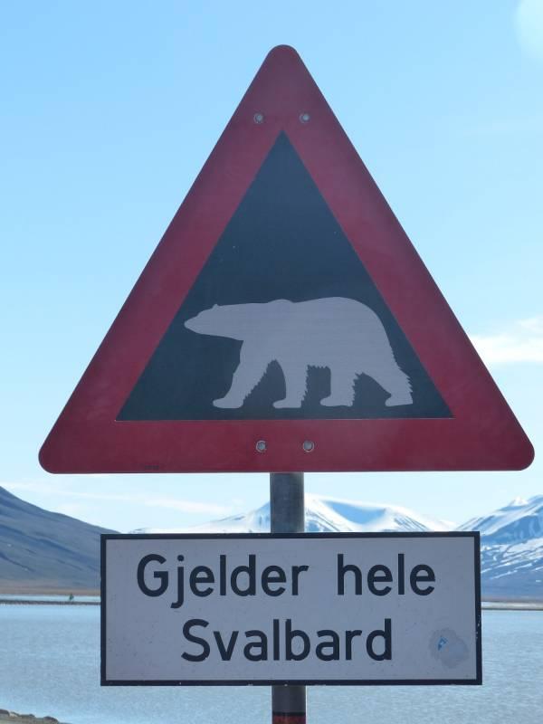 Schild, mit dem vor Eisbären gewarnt wird - Text: