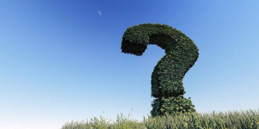 Ein Fragezeichen (Symbolbild: Arek Socha)