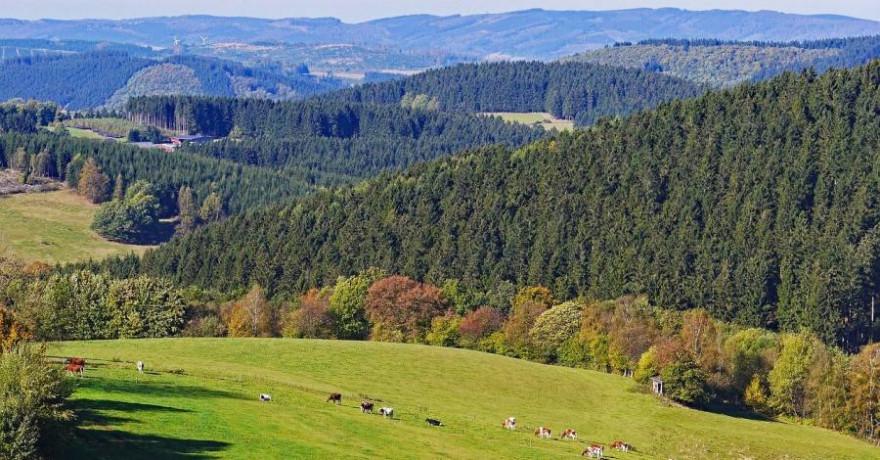Wälder und Weiden im Sauerland (Symbolbild: Erich Westendarp)