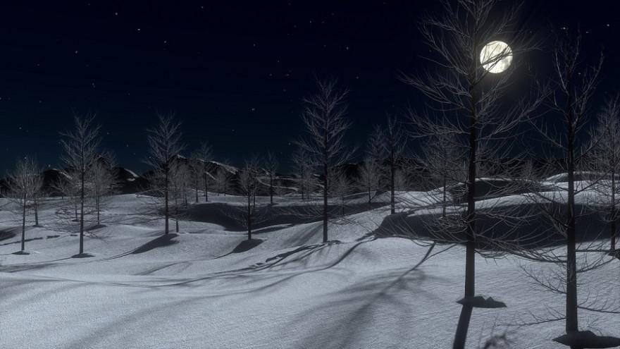 Wald bei Schnee und Vollmond