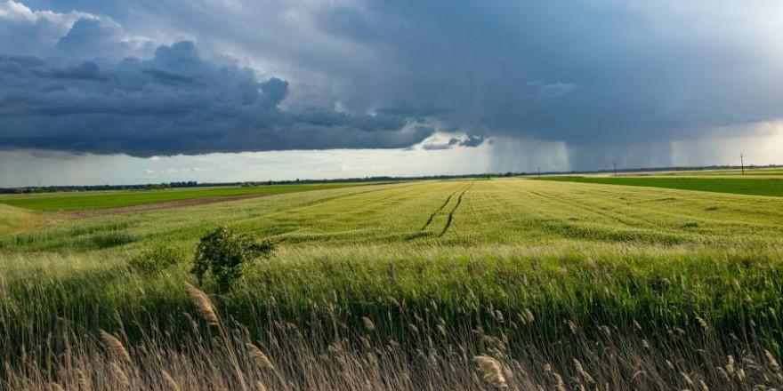 Ackerland unter starker Bewölkung (Symbolbild: Konnyvesotto)