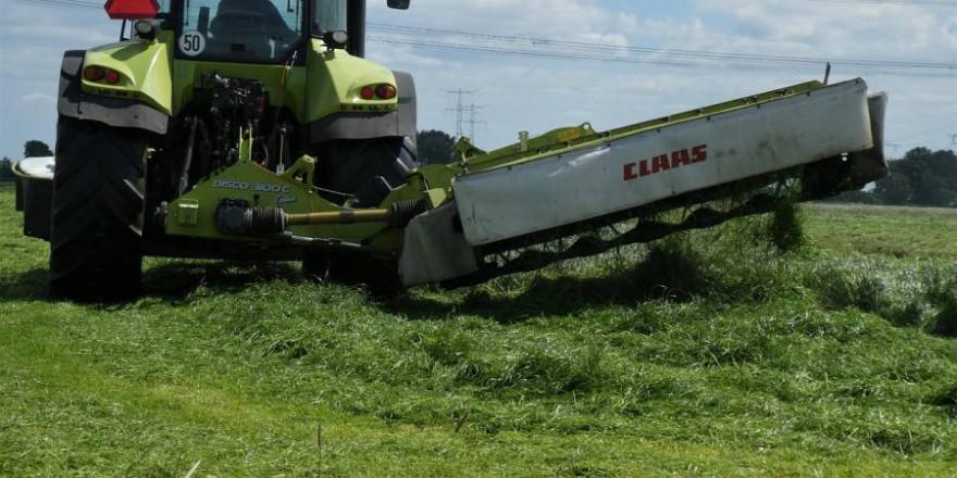 Traktor mit Mähwerk bei der Mahd (Symbolbild: Elsemargriet)