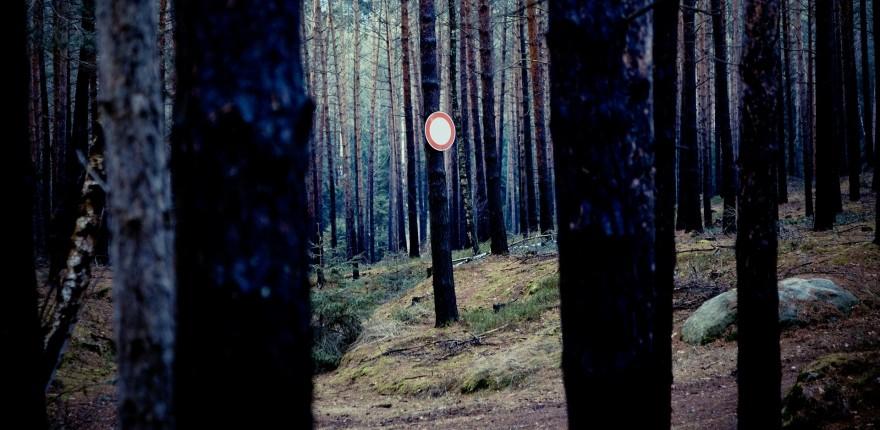 Verbotsschild im Wald